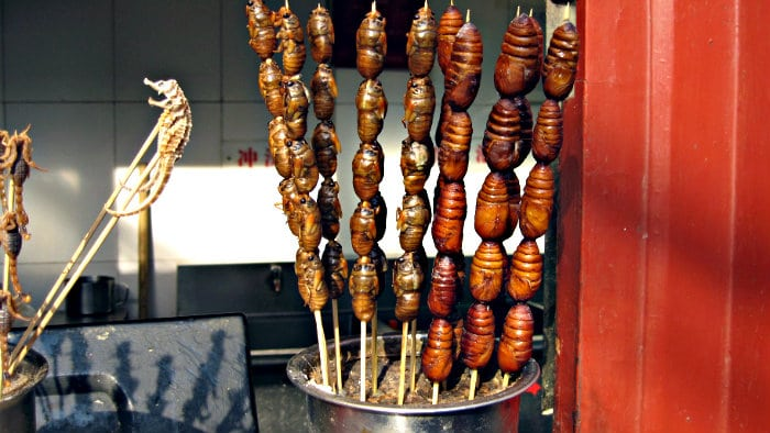 I can try any exotic food abroad if I know that it is safe to eat.
