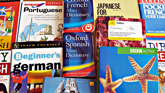 You can travel around the world without knowing foreign languages.